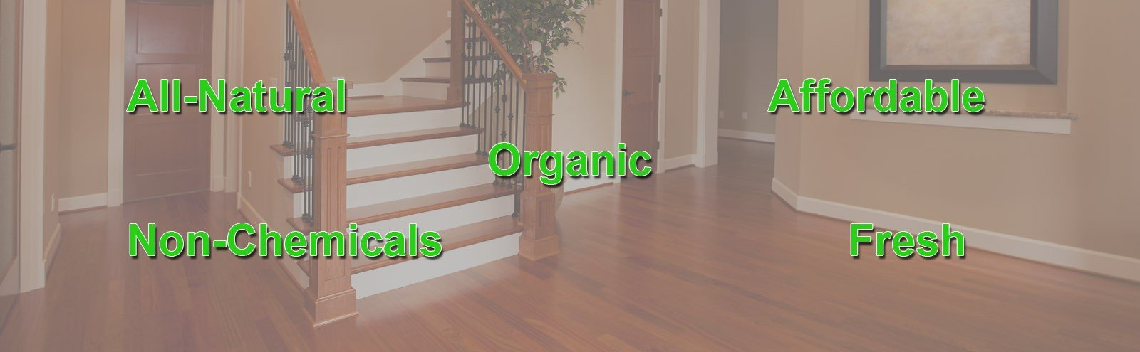 Dna Fresh Carpet Cleaning Restoration Cleaning Sevice In